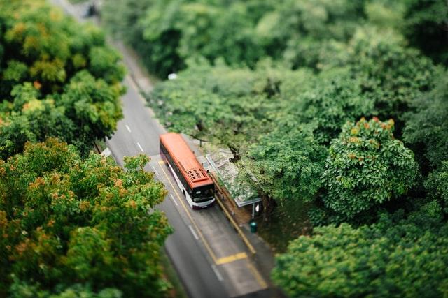 Buss uppifrån i skogen
